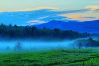 森林夜雾风景
