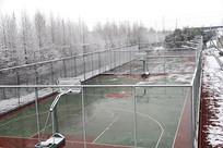 雪天网球场