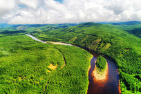 穿越绿色林海的河流-激流河