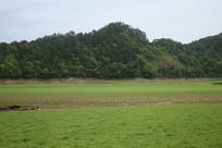 有山有草的库弯