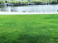 大宁公园大草坪