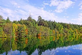 长白山秋湖彩林