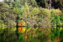 长白山秋季湖泊彩林