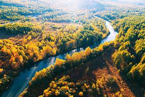 穿越林海秋色的河流