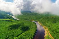 穿越绿色林海的河流