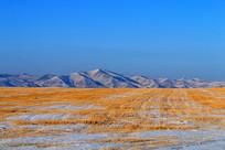 冬天的农田