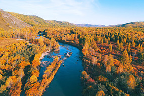 航拍金秋森林河