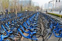 街边的小蓝单车