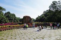 广州华南植物园景观