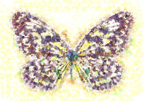 蝴蝶数码印花