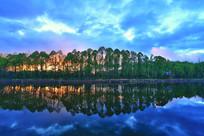 湖水绿树林暮色
