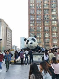 IFS熊猫