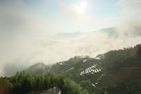 早上山里雾