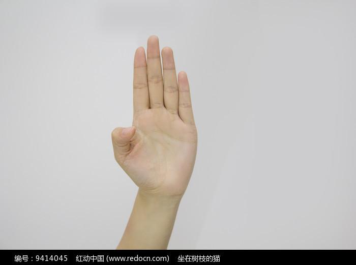 手势4图片