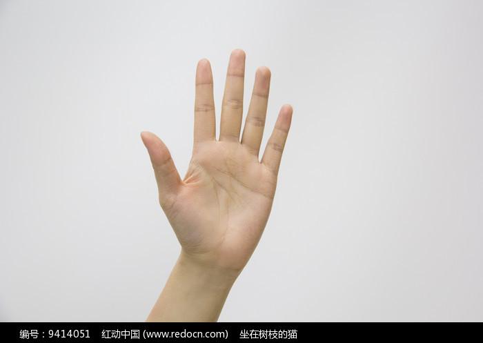 手势5图片