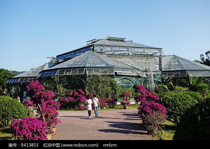 种植植物的玻璃阳光温室 图片