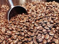静物咖啡豆