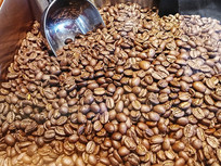 咖啡豆拍摄