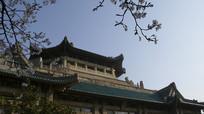 武大图书馆楼顶