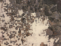 地毯编织纹