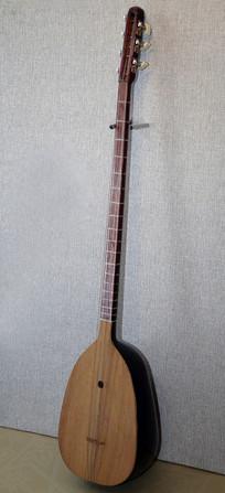 夏西塔尔乐器