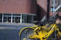 便利的共享单车