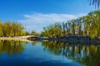 燕山大学燕鸣湖与石桥树木