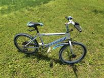 草地自行车