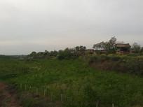 华山下的农庄