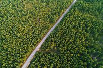 大兴安岭的山林公路(航拍)