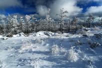 林海雪原雾凇
