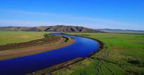 草原河畔绿色牧场羊群