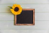 黑板上的向日葵