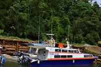 码头的快艇游船客船