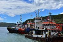 码头的拖船