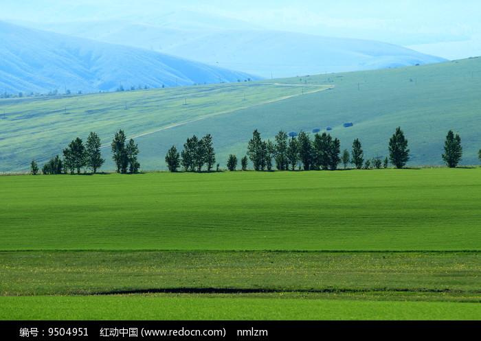 绿色田园风光图片