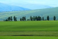 绿色田园风光