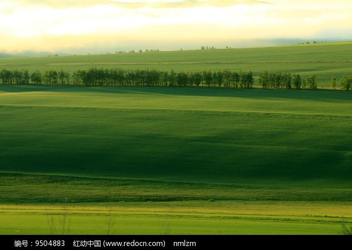绿色原野晨雾缥缈图片