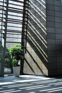 办公楼的阳光