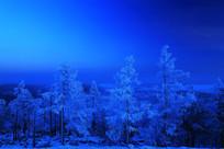 月光下的山林雾凇景观