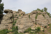 地质公园奇异石林