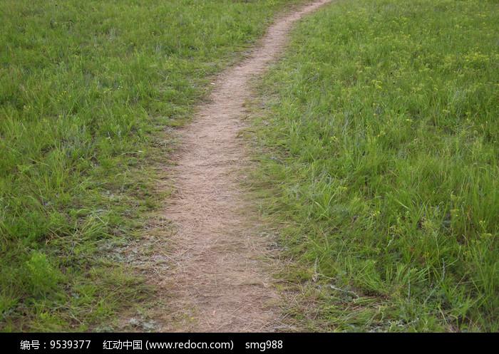 草地上的小路图片