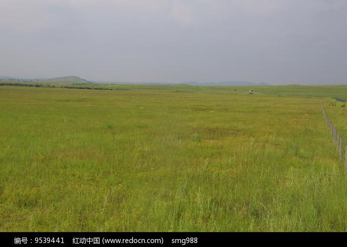 草原牧场图片