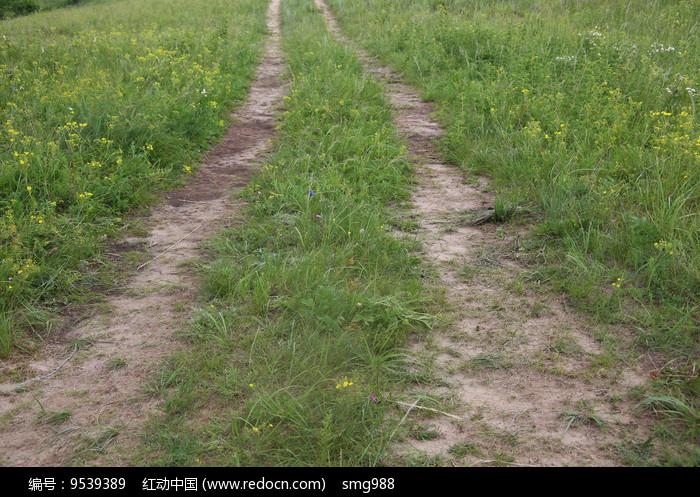 草原上的车辙小路图片