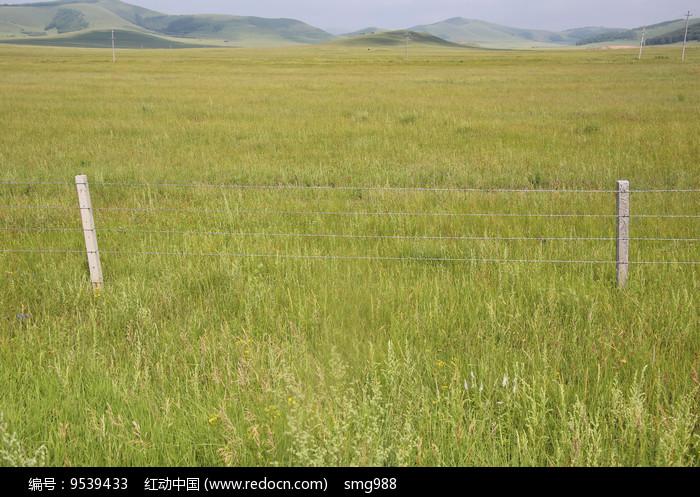 草原上的牧场图片