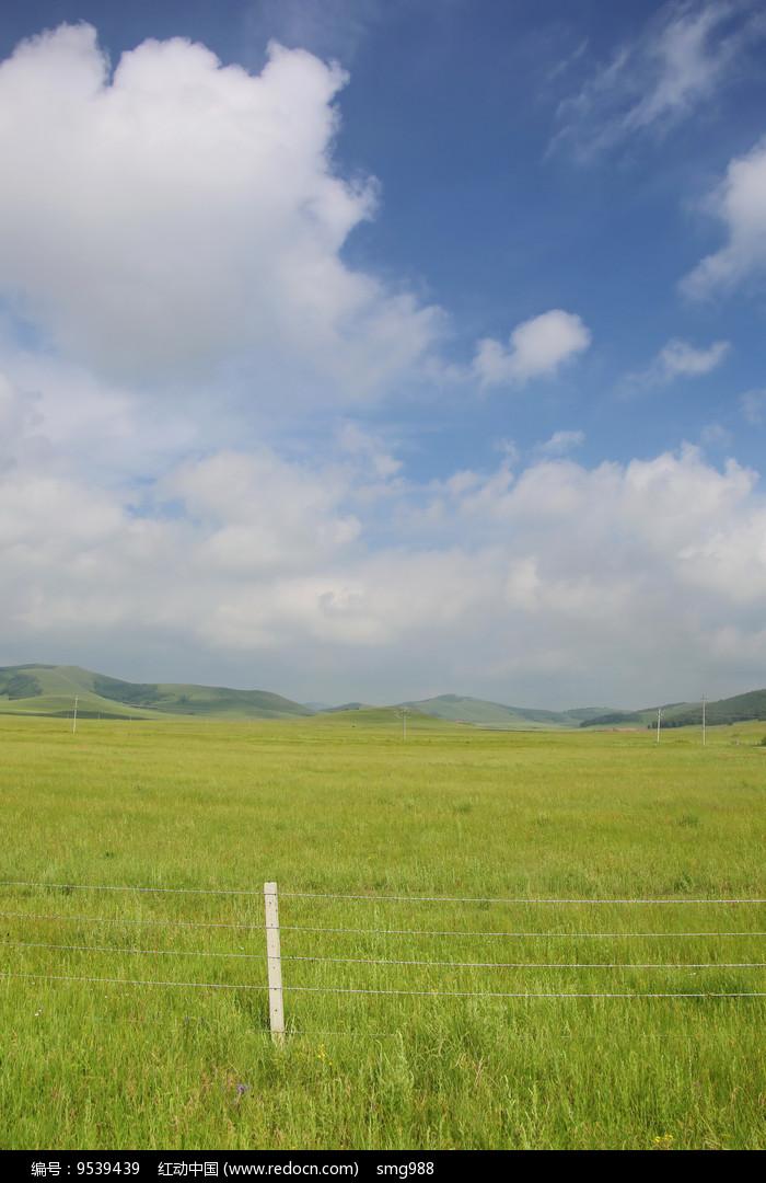 蓝天白云下的草原牧场图片
