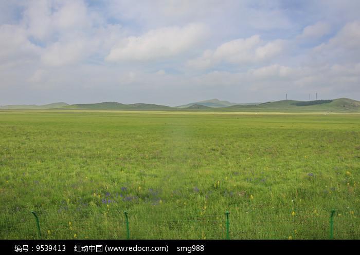 辽阔的草原图片