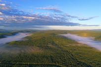 绿色林海晨雾迷漫 (航拍)