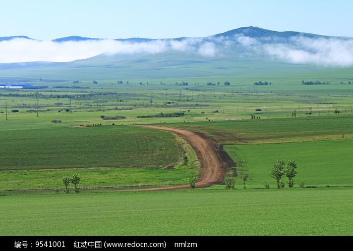 绿色田野小路晨雾图片