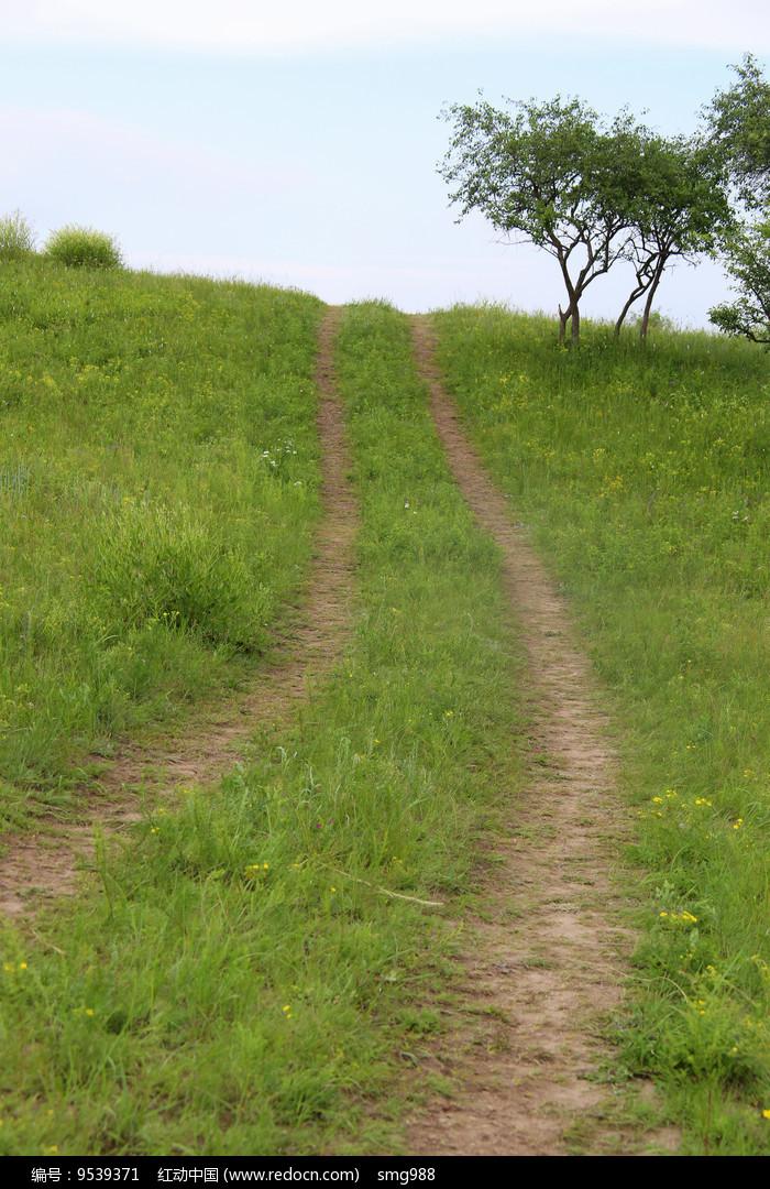 山坡上车辙小路图片